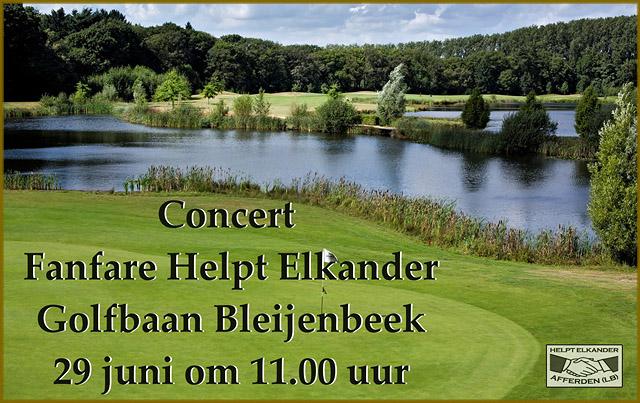 concert_fanfare_bleijenbeek_2014