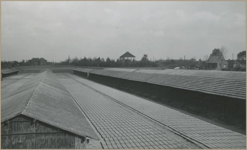 dorpsarchief_steenfabriek_1940